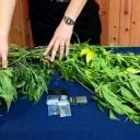Torre Annunziata: 40enne ai domiciliari sorpreso dai carabinieri in possesso di marijuana e di materiale per confezionarla. Arrestato
